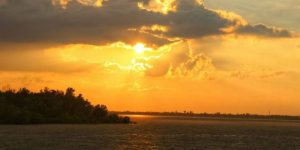 A TRIP TO SUNDARBAN IN MARCH